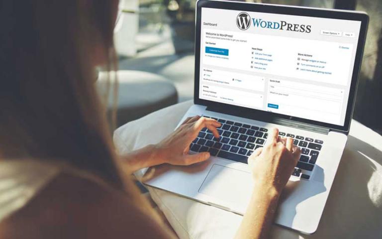 wordpress website workshop wit get online nola